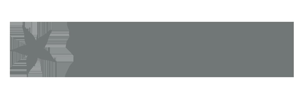 BCIS Partner Starface